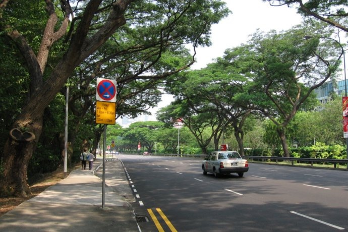 SG: Upper Bukit Timah Road to be temporarily closed