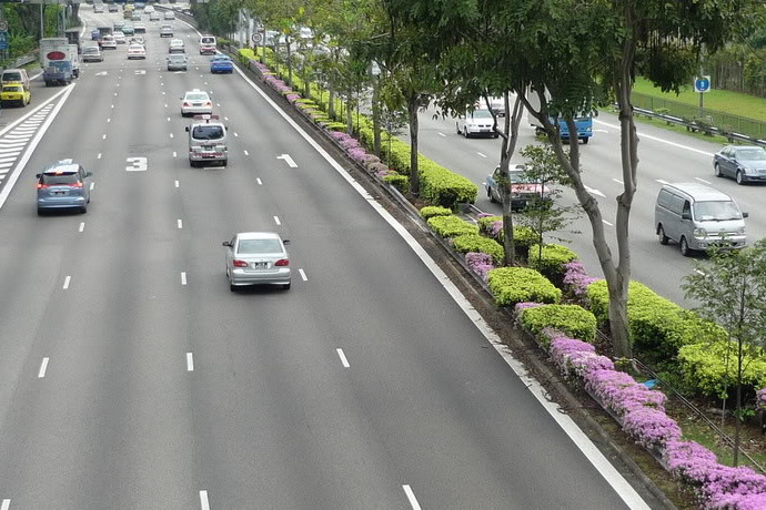 SG: New speed cameras to be installed