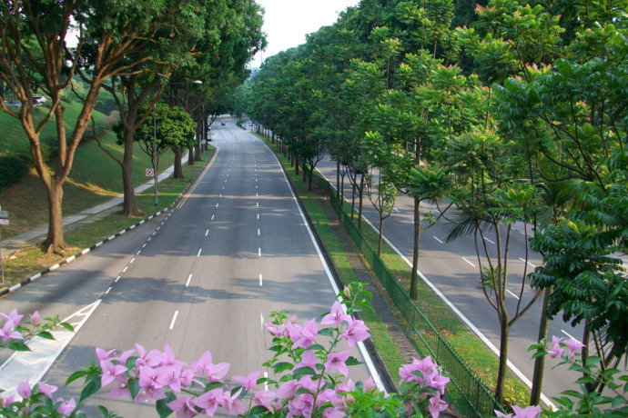 SG: Seletar Flyover will be opened soon