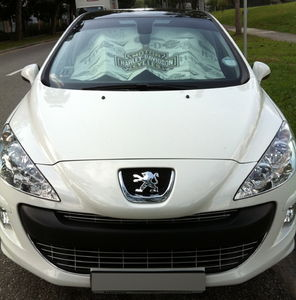Peugeot 308 1.6 Glass Roof (A)